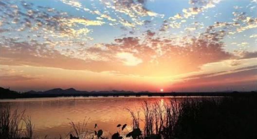 长沙知名湿地公园修建公司