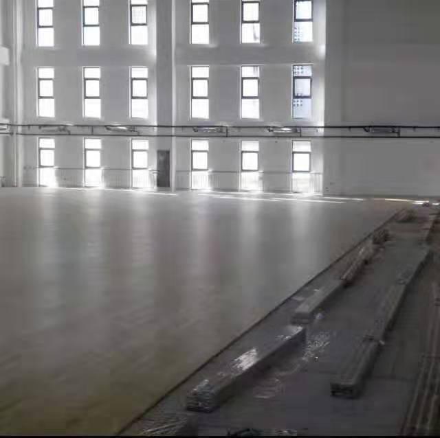 枫桦木运动木地板安装定制