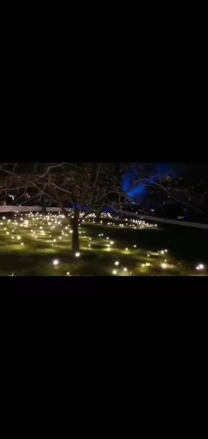 合肥螢火蟲燈互動