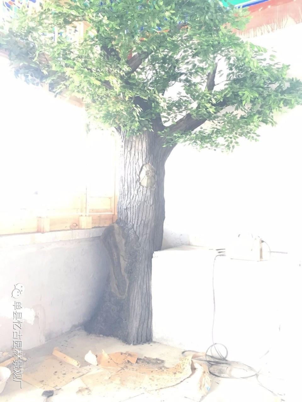 焦作生态园假树大门规格
