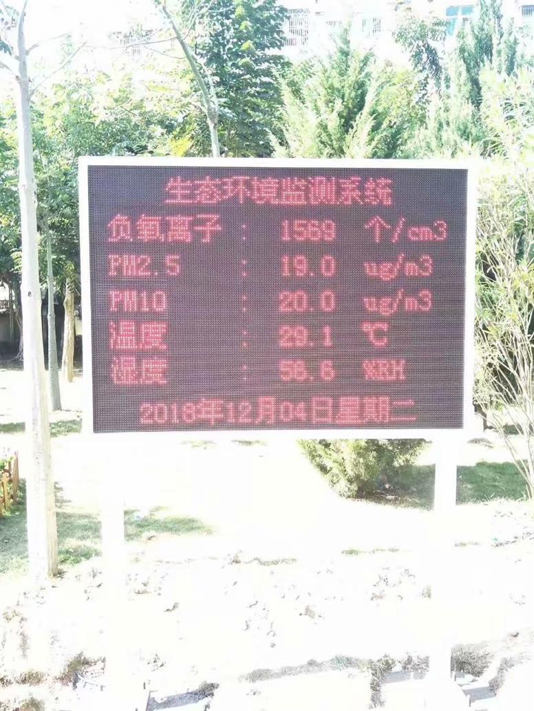 佛山社区负氧离子监测