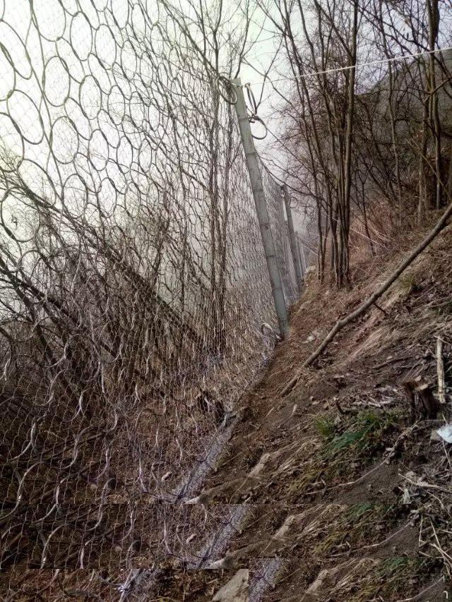 云南高速公路防护网检测价格