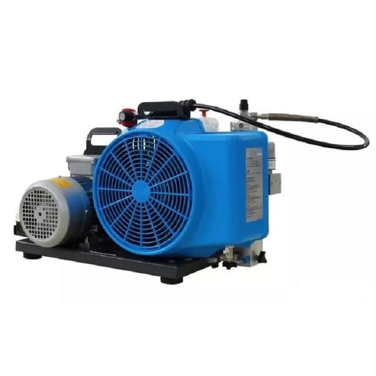 湖北梅思安100T高压空气压缩机排气量