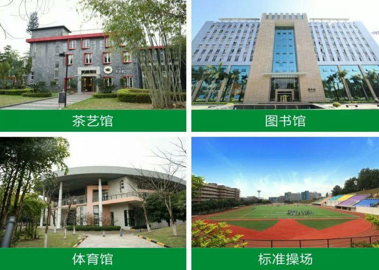 广州岭南敬老院护理收费