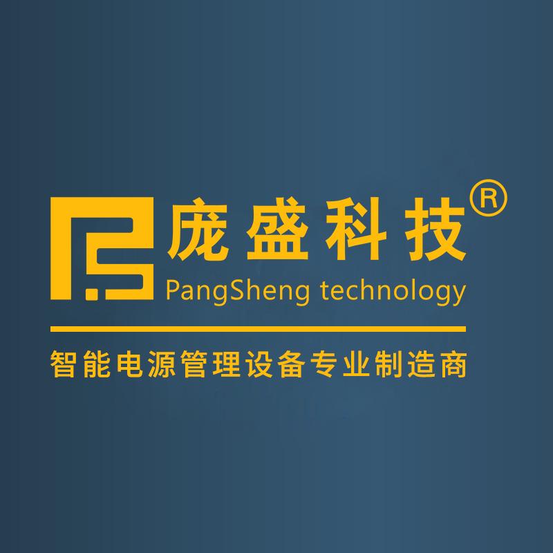 廣東龐盛科技有限公司