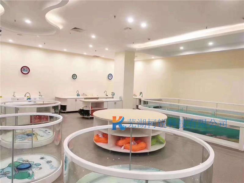 儿童游泳池专业化设备