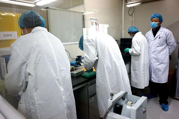 广州花都区DNA鉴定收费标准