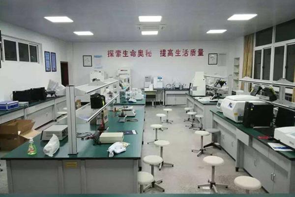 广州市DNA亲子鉴定价钱明细