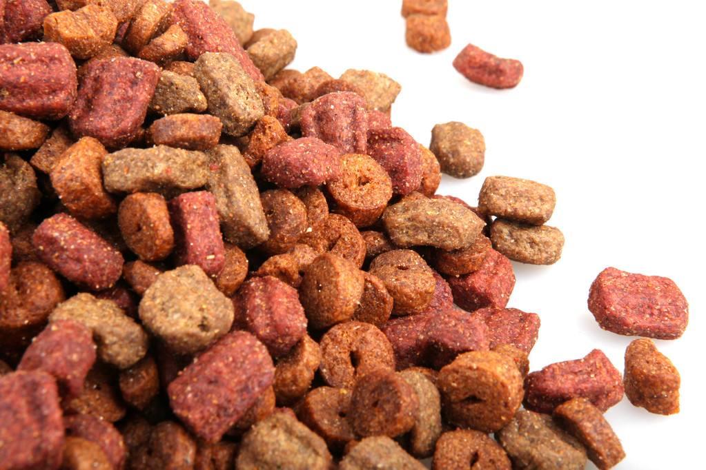 上海宠物零食进口清关报关监管要求