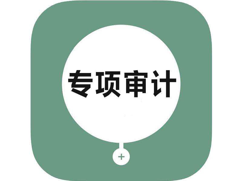 上海高新专项审计报告范文