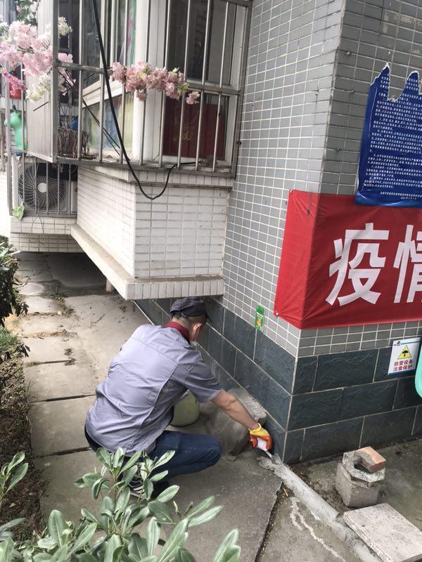 邛崃道佐乡餐饮灭蟑螂公司