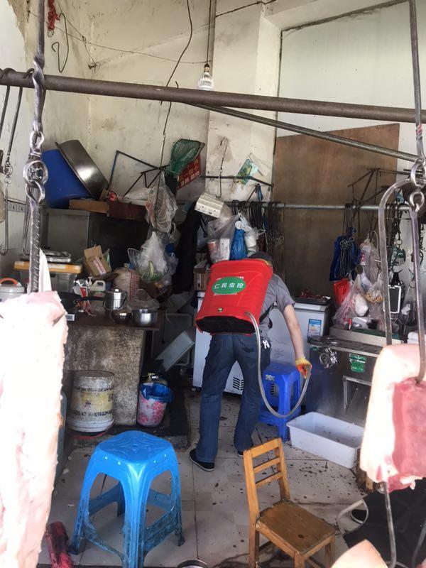 彭州致和社区除虫公司