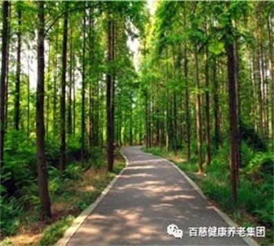 广州市申办养老院的条件