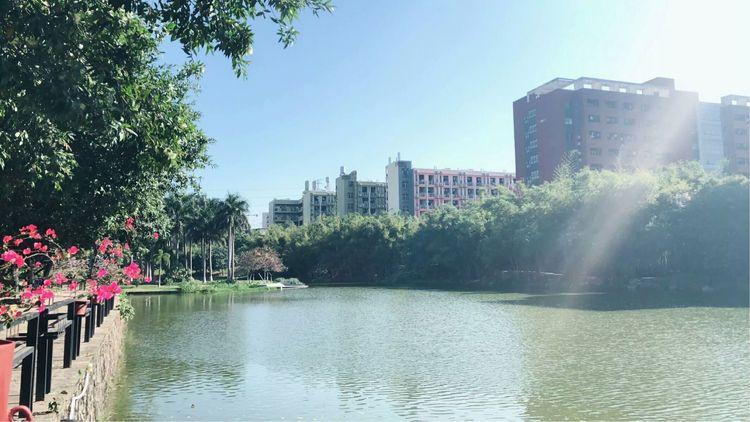 广州岭南民办养老院的收费标准如何