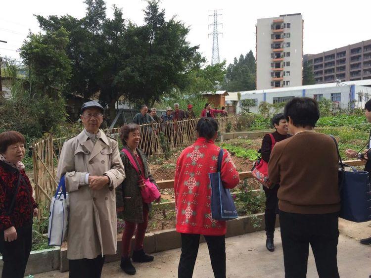 广州岭南的有免费养老院嘛