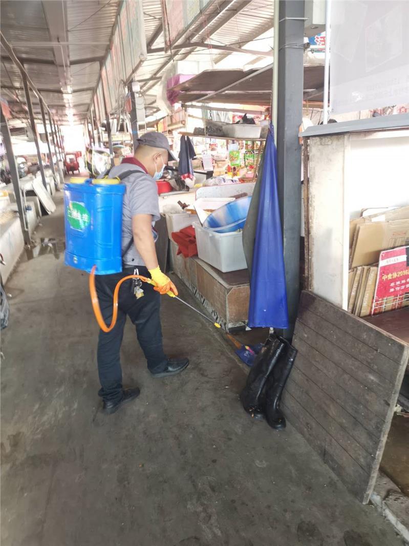 成都市东坡杀虫服务