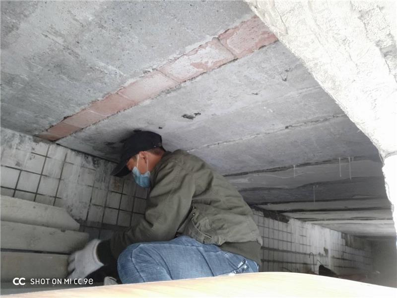 郫县区红光灭鼠除虫公司