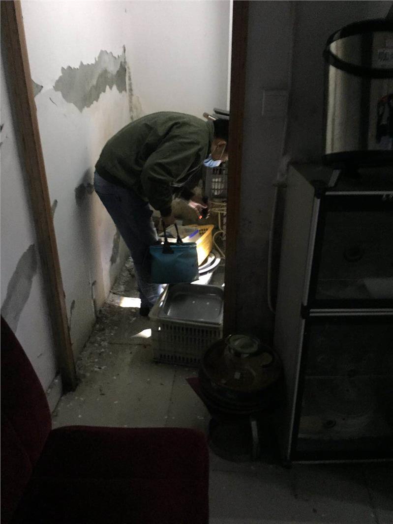 四川省家庭灭鼠除虫公司