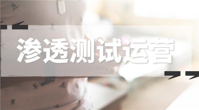 来宾网站漏洞检测公司