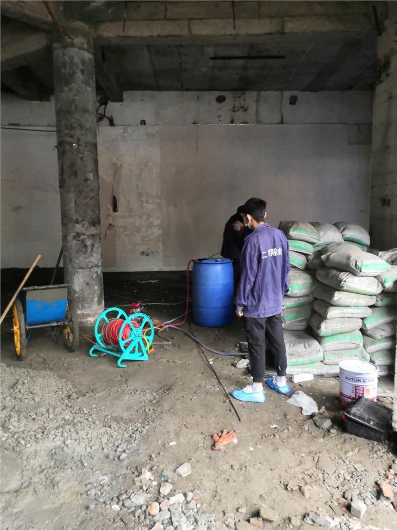 雅安宝兴县灭鼠公司