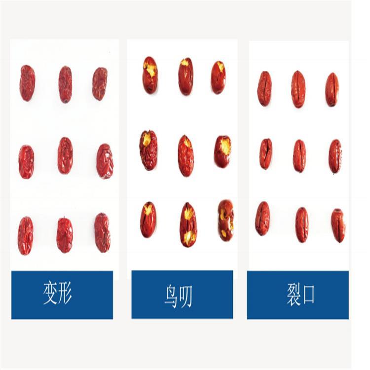棗莊篩果機