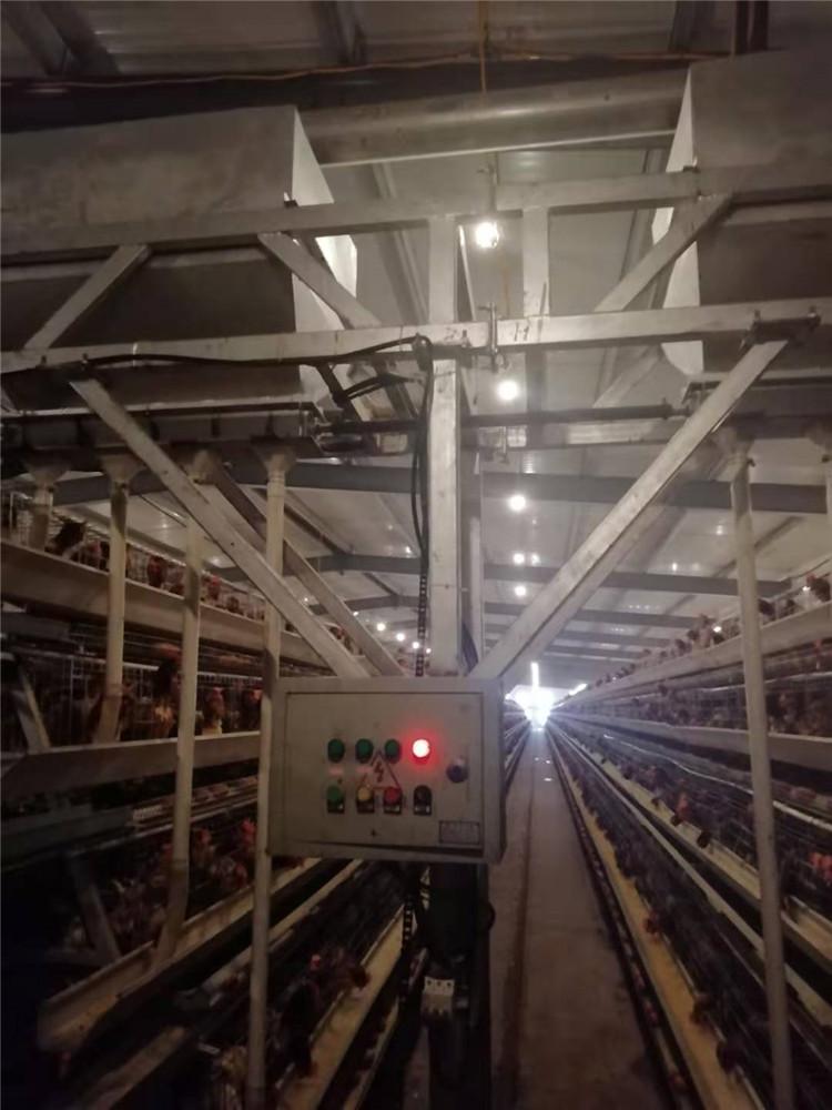四层阶梯式蛋鸡笼厂家 自动化小鸡笼