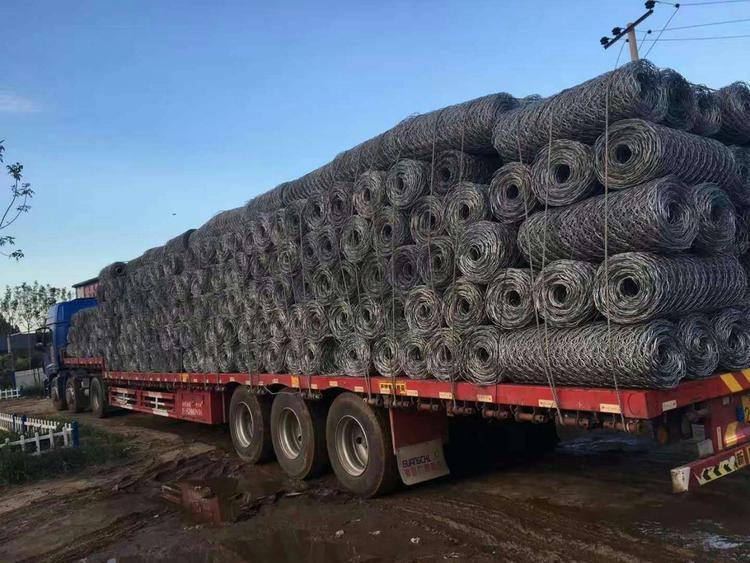 畜牧养殖六角网铁丝网质量保证