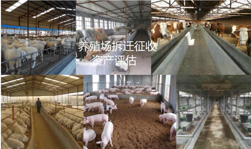 赣州养殖场资产评估补偿