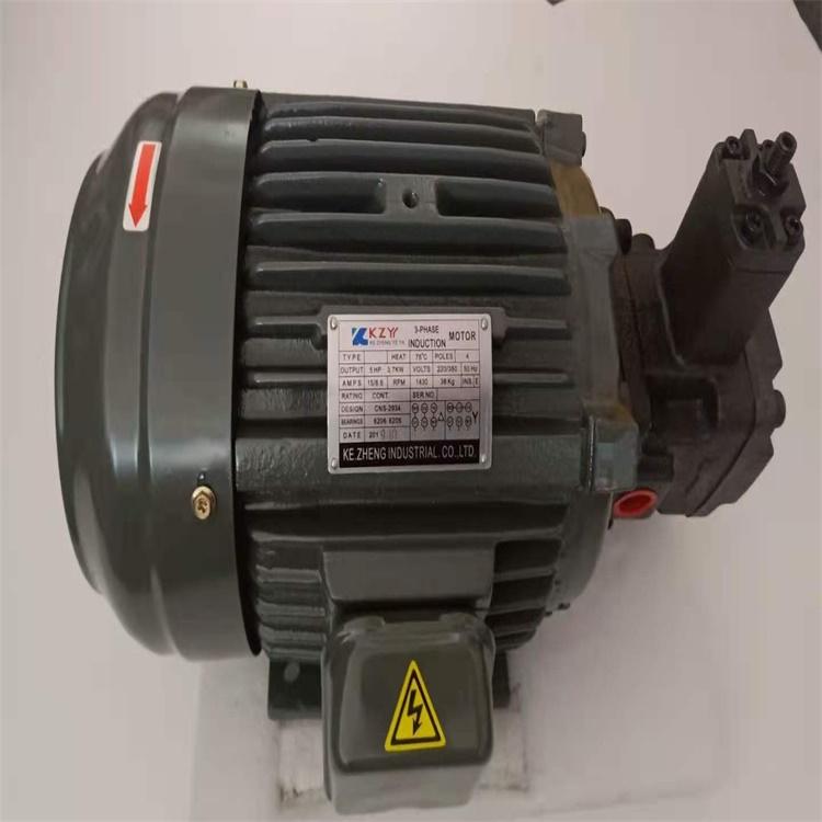 葉片泵廠家 機床油泵 YBX-D50BV3