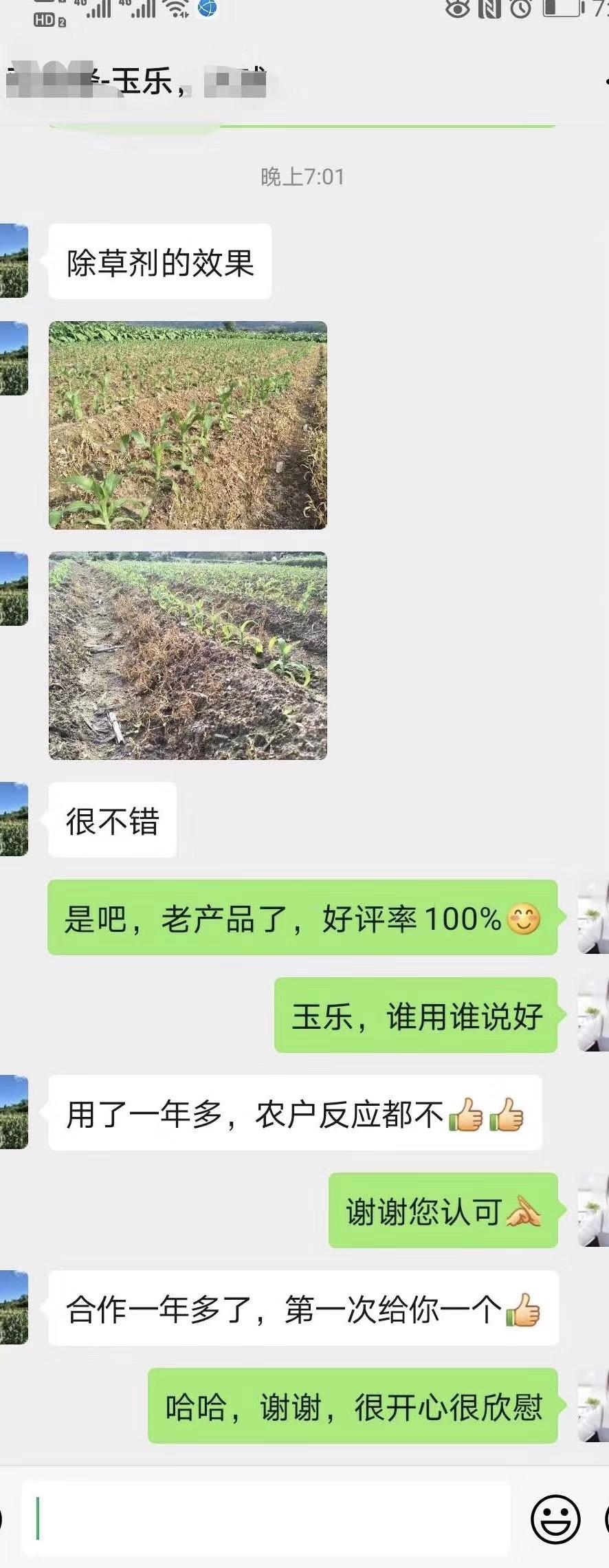 迪庆甜糯玉米除草剂