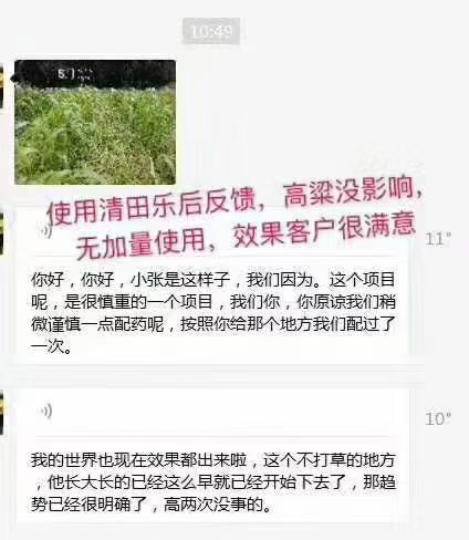 永州高粱田除草剂