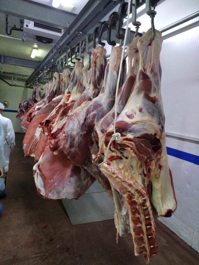 武漢冷凍豬肉進口報關公司-進口凍豬肉通關