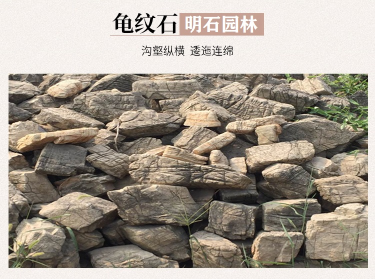 武汉龟纹石假山