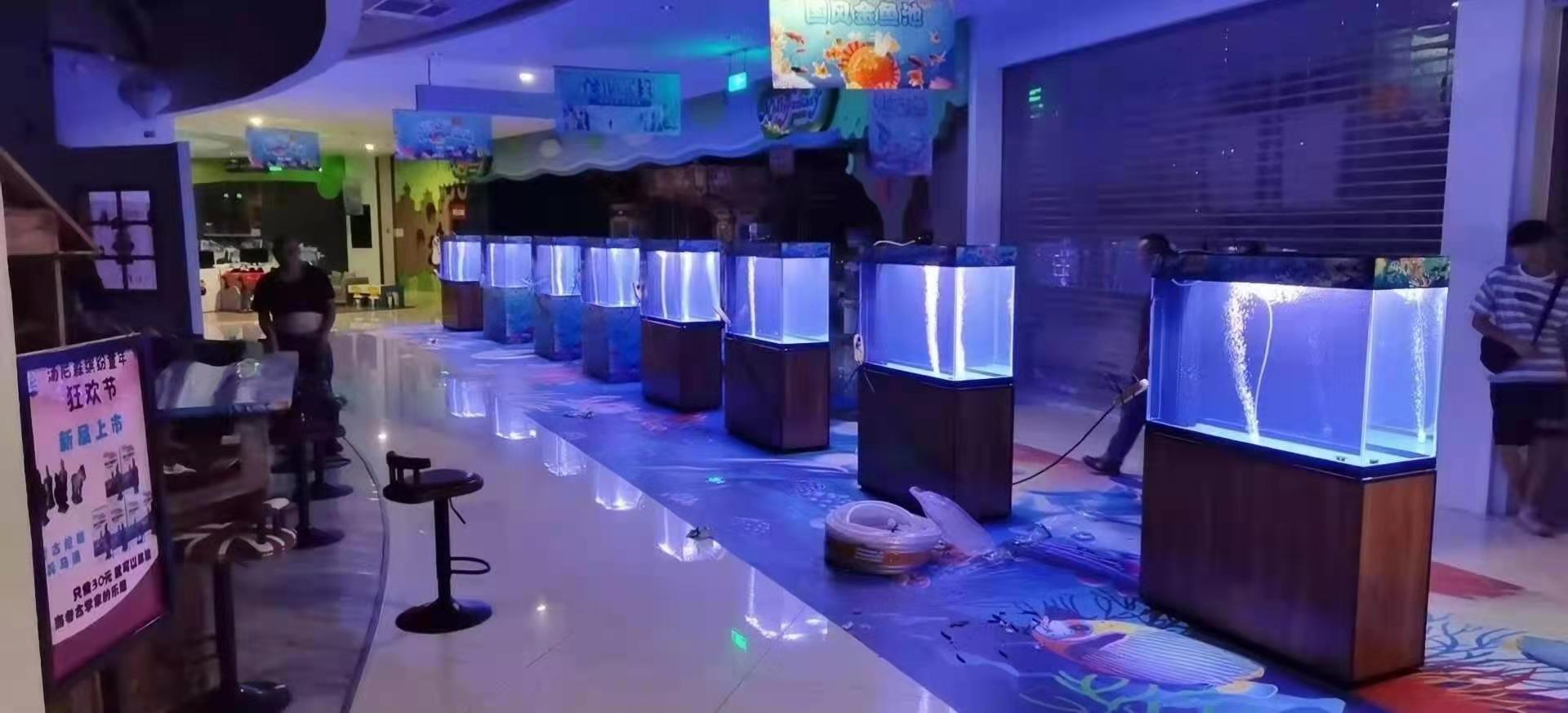 南宁海洋生物展租赁电话