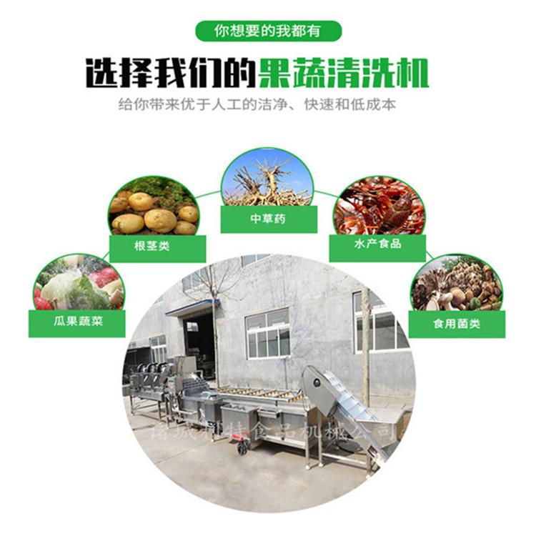 锦州大型气泡清洗机