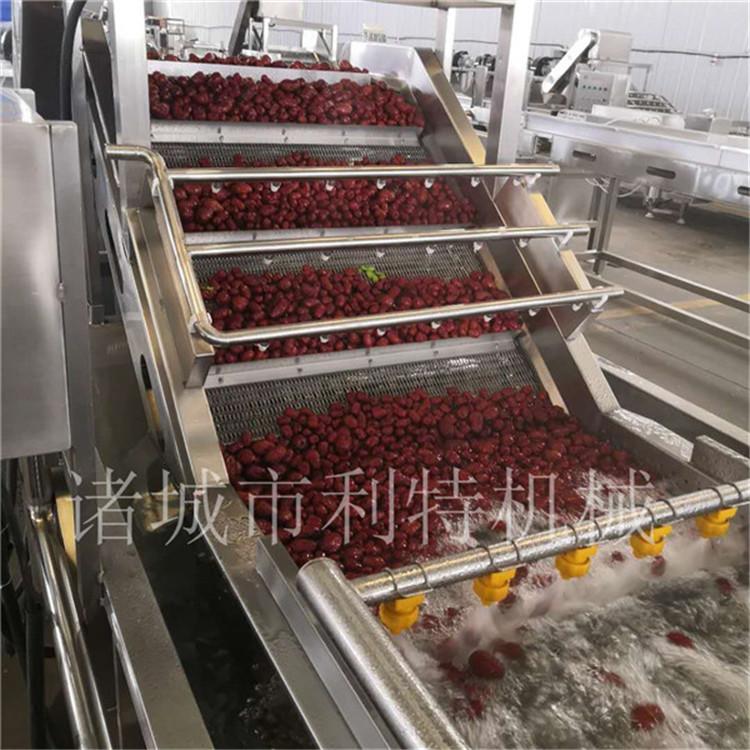 上海小型大枣加工设备