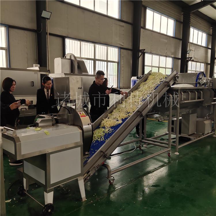潍坊新型净菜加工生产线