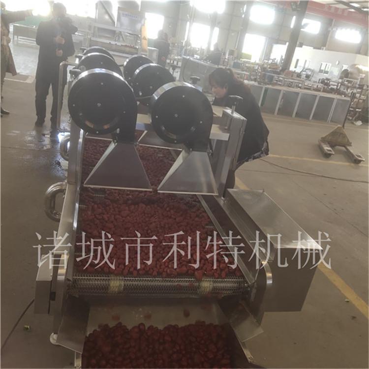 广西小型红枣加工机械