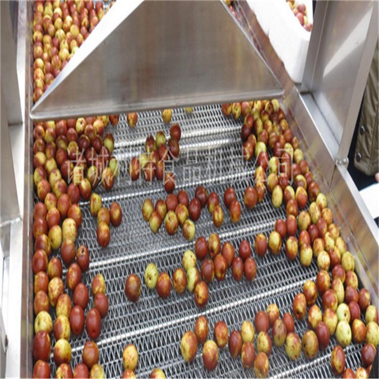 安徽小型葡萄干加工生产线