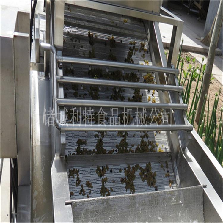 全自动红枣加工设备供应商