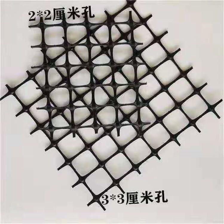 经编土工格栅塑料养鸡围网