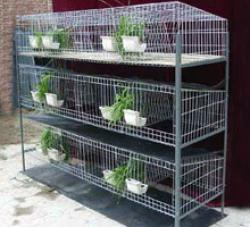 宠物兔笼价格_兔子笼厂家 飞创丝网厂提供农村致富采购养殖笼 加粗兔笼